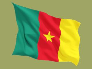 Nazionale Cameroon Bandiera